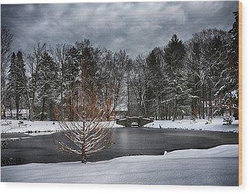 Stone Arch Bridge In Winter Wood Print by Tricia Marchlik