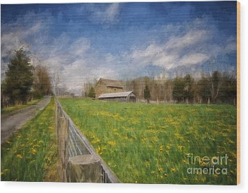 Stone Barn On A Spring Morning Wood Print by Lois Bryan