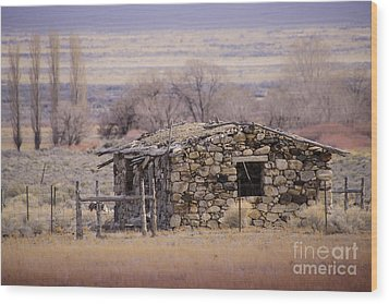 Stone Cabin In The Big Smoky Valley Wood Print by Janis Knight