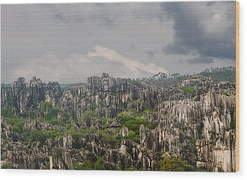 Stone Forest 2 Wood Print