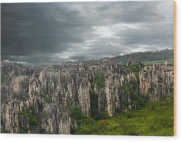Stone Forest Wood Print