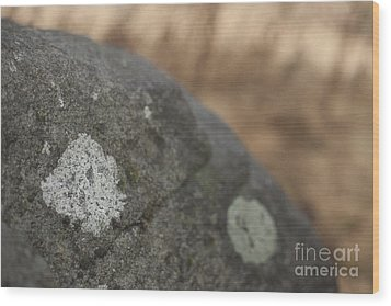 Stone Wood Print by Graham Foulkes