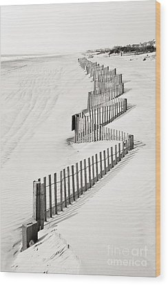 Stone Harbor Wood Print by Joseph J Stevens