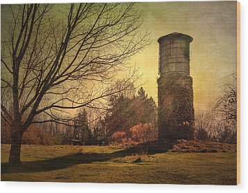 Stone Silo And Water Tower  Wood Print by Betty  Pauwels