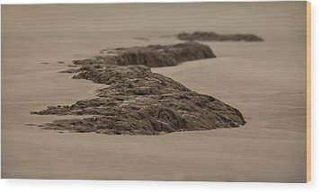 Stoned Wood Print by Mario Celzner