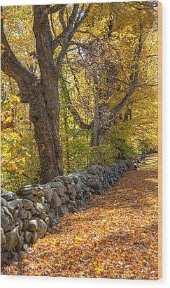Stonewall In Autumn Wood Print by Donna Doherty