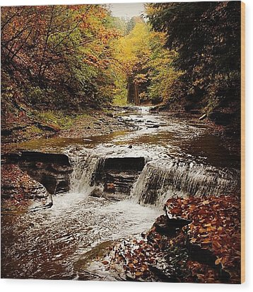 Stony Brook Gorge Wood Print by Justin Connor