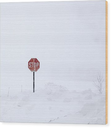 Stop For Snowstorm Wood Print