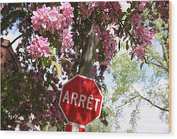 Stop To Smell The Flowers Wood Print by Frederico Borges