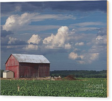 Wood Print featuring the photograph Storm Above by Gena Weiser