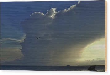 Wood Print featuring the photograph Storm Across Delaware Bay by Ed Sweeney
