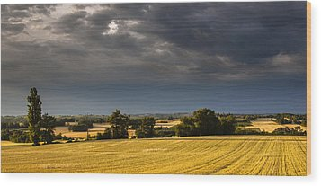 Storm Brewing Over Corn Wood Print by Matthew Bruce