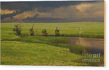 Storm Crossing Prairie 1 Wood Print