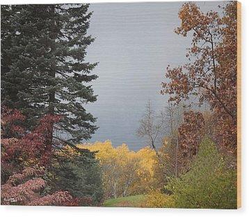 Storm In Hidden Gardens Wood Print