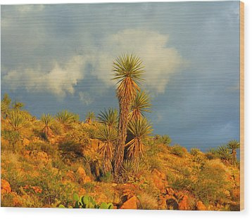 Storm In The Desert Wood Print