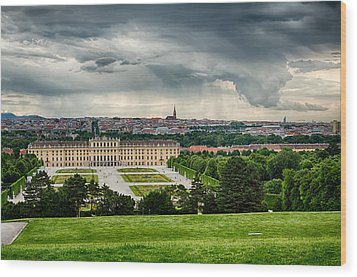 Storm Over Vienna Wood Print by Viacheslav Savitskiy