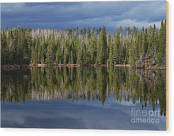Storm Reflections Wood Print by Larry Ricker