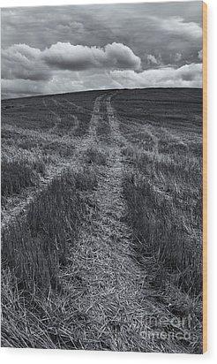 Storm Tracks Wood Print by Mike  Dawson