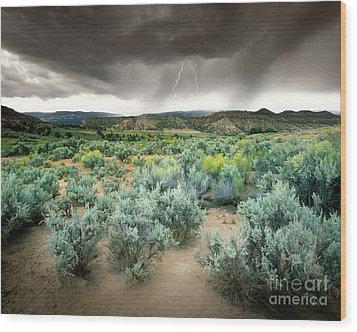 Storms Never Last Wood Print by Edmund Nagele