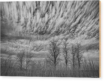 Wood Print featuring the photograph Storms To Come by Yvonne Emerson AKA RavenSoul