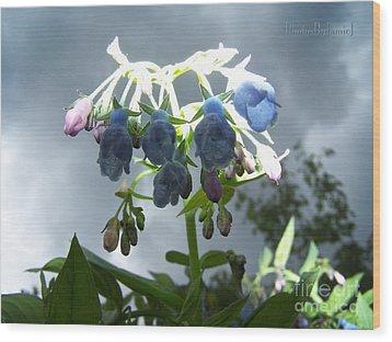 Stormy Bluebells Wood Print