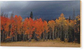 Stormy Wood Print by Brenda Pressnall