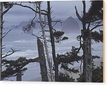 Stormy Cannon Beach Wood Print