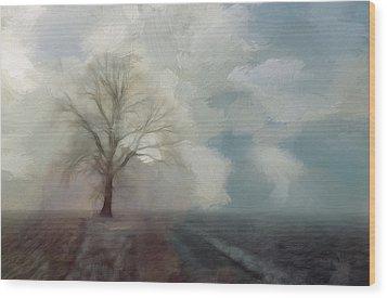 Stormy Day Wood Print by Steve K