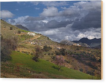 Stormy Mediterranean Landscape Wood Print