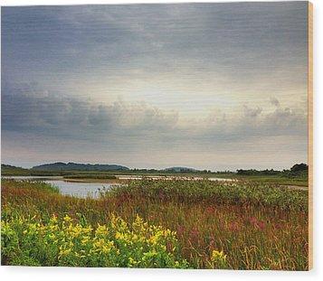 Stormy Skies Wood Print by Nancy Landry