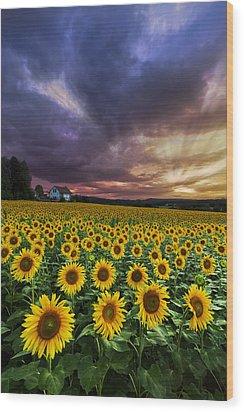 Stormy Sunrise Wood Print by Debra and Dave Vanderlaan