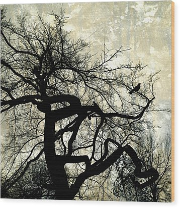 Stormy Weather  Wood Print by Ann Powell