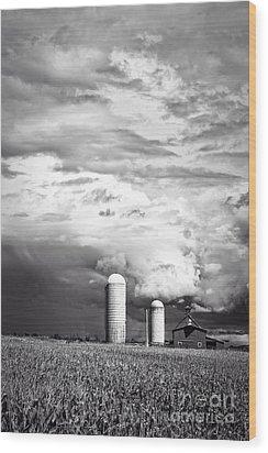 Stormy Weather On The Farm Wood Print by Edward Fielding
