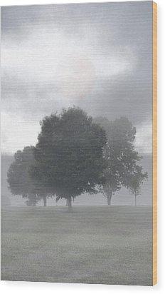 Wood Print featuring the photograph Strange Moon by Ben Kotyuk