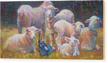 Stranger At The Well - Spring Lambs Sheep And Hen Wood Print by Talya Johnson