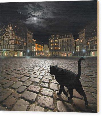 Strasbourg's Night Wood Print by Igor Zenin