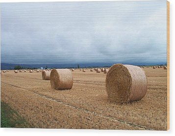Straw For The Garden Maybe Wood Print