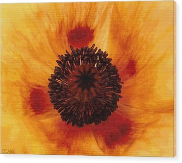 Straw Poppy Wood Print