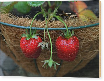 Strawberries Wood Print by Pamela Walton