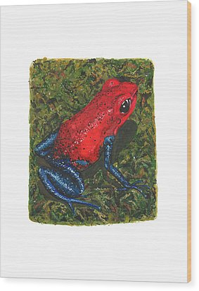 Strawberry Poison Dart Frog Wood Print by Cindy Hitchcock