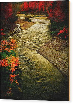 Wood Print featuring the photograph Stream by Bill Howard
