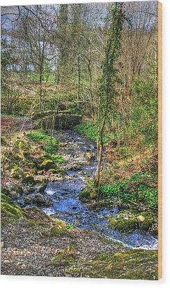 Wood Print featuring the photograph Stream In Wales by Doc Braham