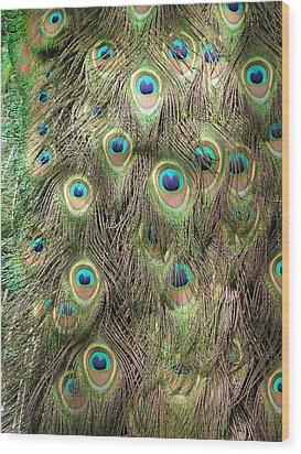 Wood Print featuring the photograph Stream Of Eyes by Diane Alexander
