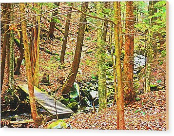 Stream On Appalachian Trail Wood Print
