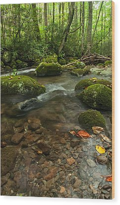 Wood Print featuring the photograph Stream With The Color Of Early Fall. by Debbie Green