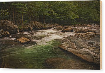 Stream Within The Trees Wood Print