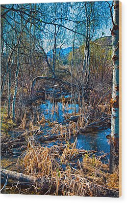 Streaming Beauty Wood Print by Omaste Witkowski