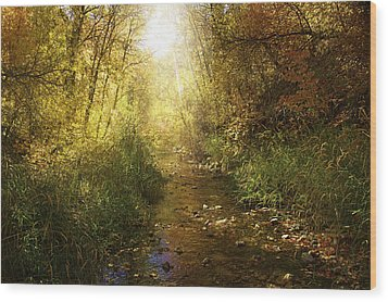 Streams Of Light Wood Print