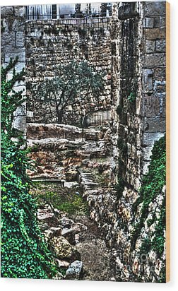 Wood Print featuring the photograph Street In Jerusalem by Doc Braham