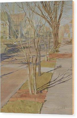 Street Trees With Winter Shadows Wood Print